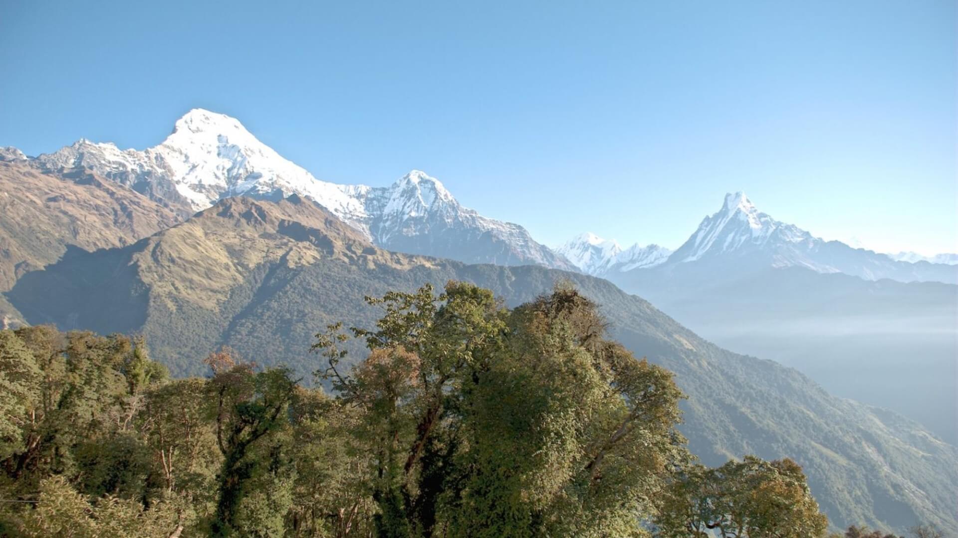 Himalayan Trek 2020
