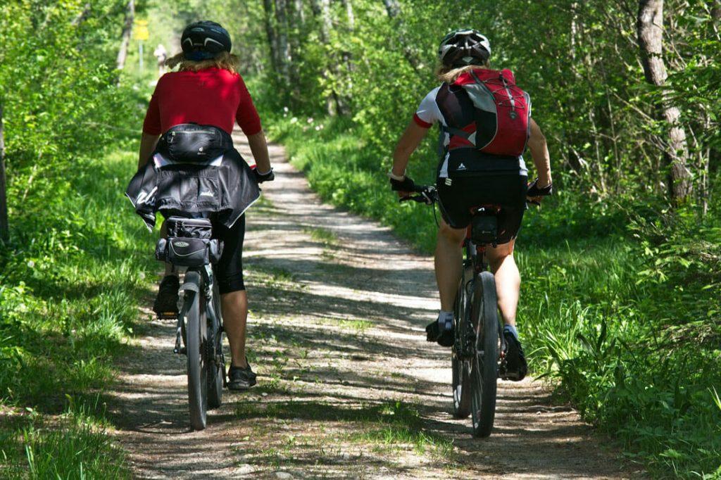 Two women mountain biking in woodland