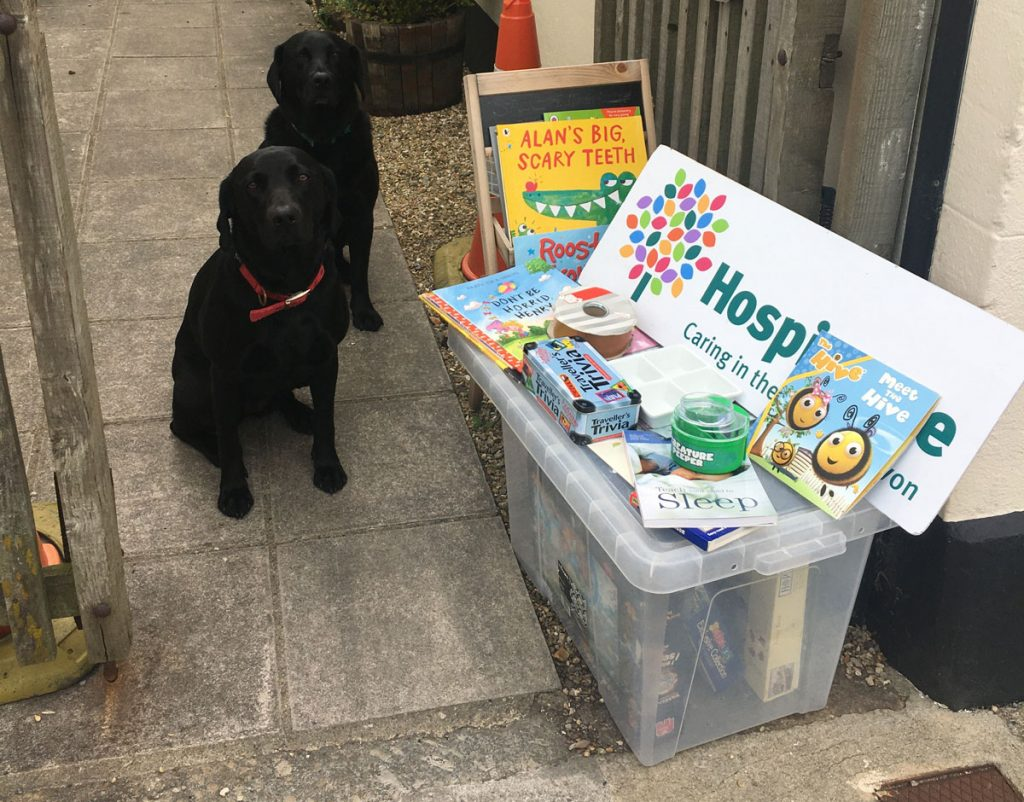 Two black Labradors and a box of charity donations