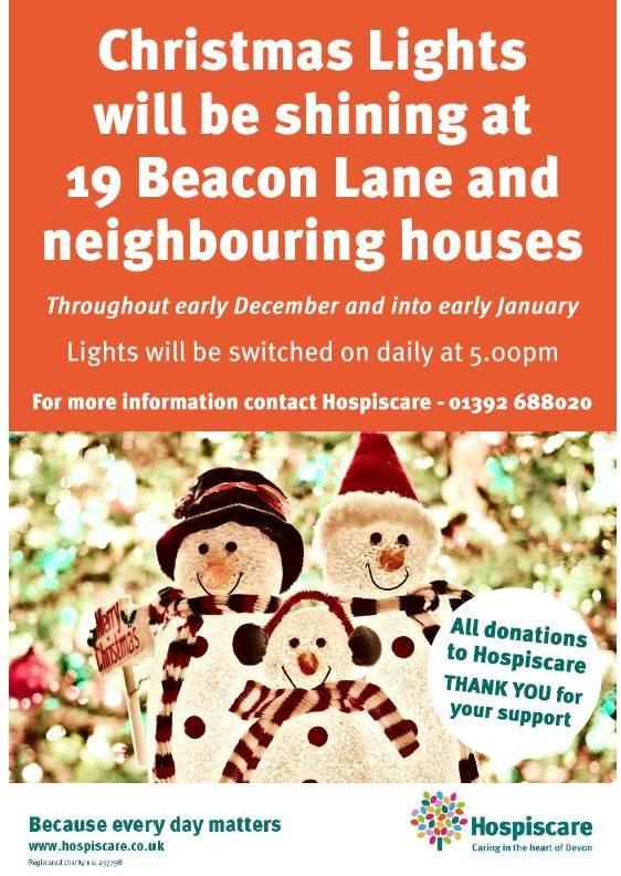 Christmas lights for Hospiscare poster
