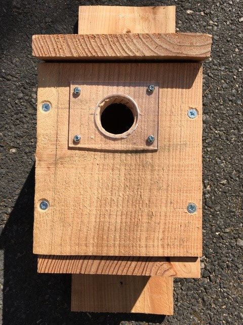 A wooden blue tit bird box