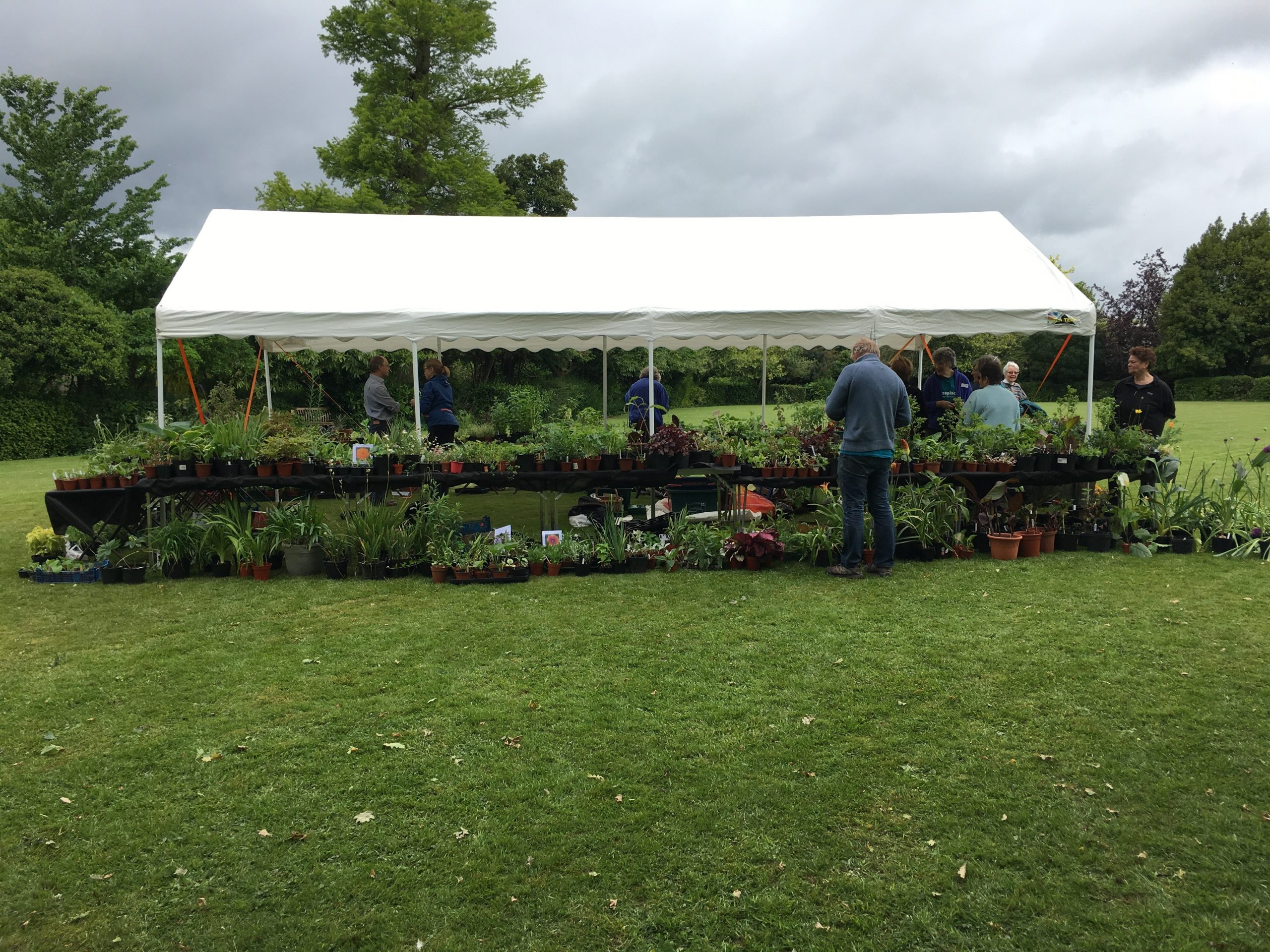 Exeter Friends Plant Sale – save the date!