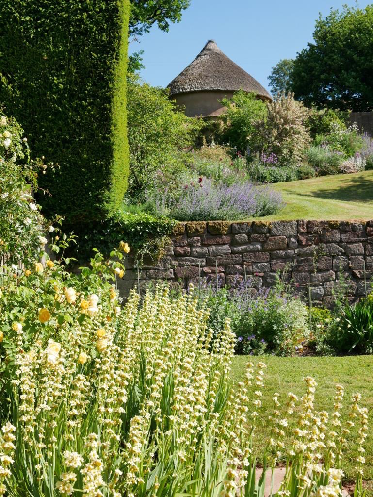 A garden with a stone wall and thatched structure