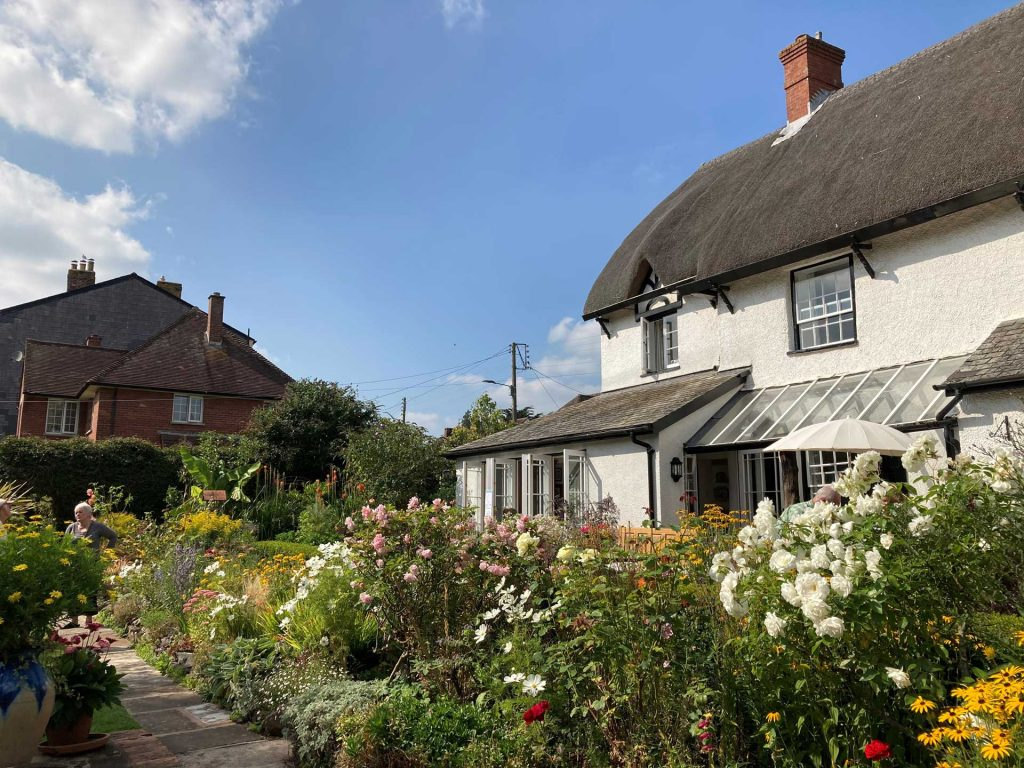 A white thatched cottage and country garden